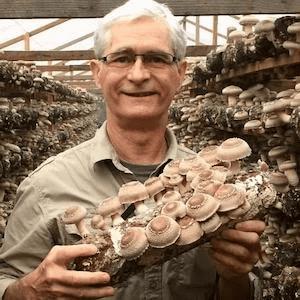 How Medicinal Mushrooms Could Give You A Long Life
